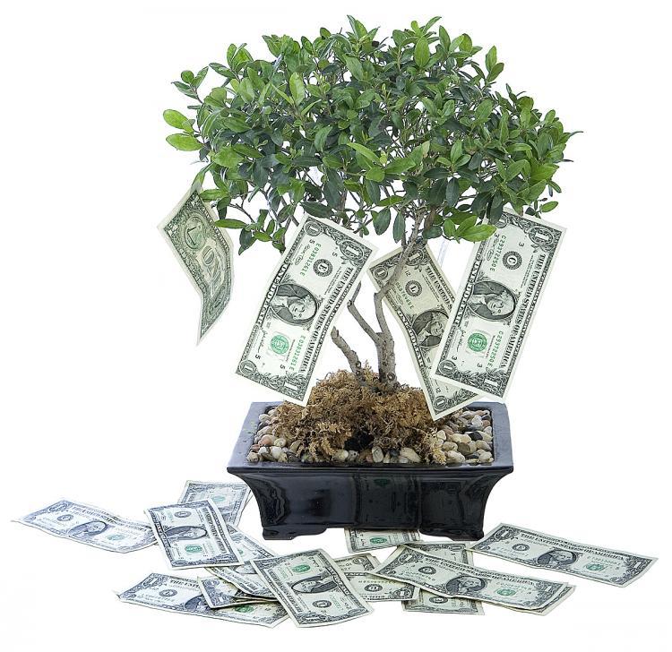 La mayoría de los negocios que ofrecen dividendos increíbles son estafas