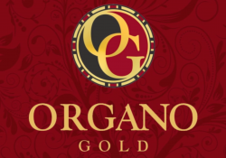 Organo Gold estafa